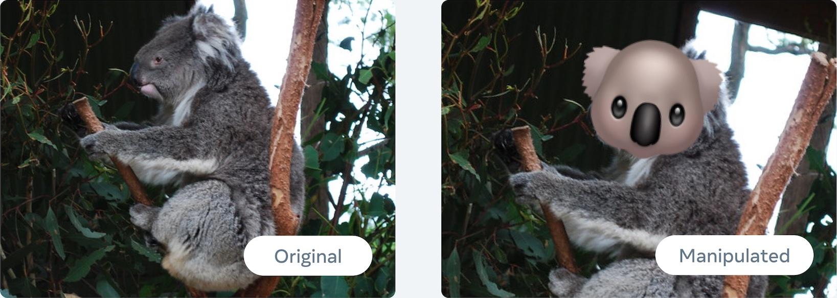similar images